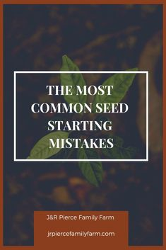 how to start seeds inside Herb Garden Design, Diy Herb Garden, Garden Ideas, Container Gardening, Gardening Tips, Flower Gardening, Vegetable Gardening, Raised Garden Beds, Raised Bed