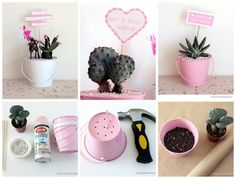 Love Cactus | 40 DIY Valentine's Day Gifts They'll Actually Want