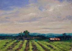 """Daily Paintworks - """"Crop Lines"""" - Original Fine Art for Sale - © Judy Wilder Dalton"""