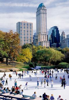 Ice skating in Central Park - New York City, USA. ...One day I'll make it to New York !