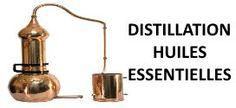 Distillation des huiles essentielles : Bien la comprendre.