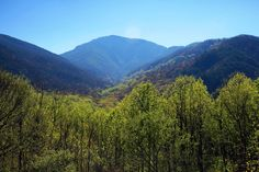 Doesn't this look like paradise? This is Great Smoky Mountains in Tennessee.