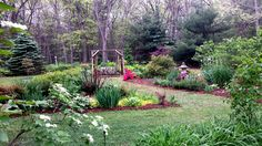 This is my newest garden just completed after a couple of years as a work in progress. Hubby just finished mulching  It's coming along...June 3 2017