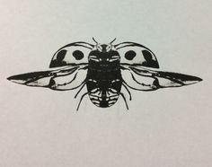 """Ladybird"" By DoolallytapDesign"
