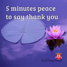 5 minutes peace to say thank you Tired, Confidence, Give It To Me, Believe, Encouragement, Stress, Parenting, Peace, Sayings