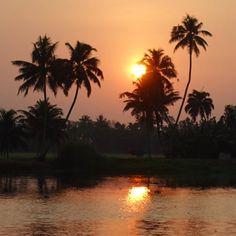 Ein herrlicher Sonnenuntergang in den Backwaters von Kerala  #taipantouristik #indien #backwaters #kerala #sonnenuntergang #soschön #fotografie #rundreise #asien #immereinereisewert #sunset #wanderlust #reiseblogger Goa, Backwaters, Kerala, Strand, Wanderlust, Celestial, Sunset, Outdoor, Round Trip