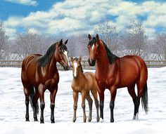 Horses Art Print featuring the painting Bay Horses In Winter Pasture by Crista Forest