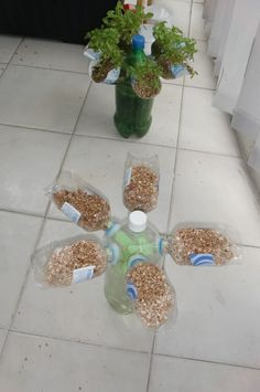 Mylatestdesign for using plastic bottles for indoor gardens is mySelf Watering Propeller Bottle Garden!  The thing I like best about this...