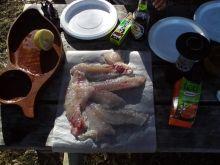 Fresh Snapper Sashimi on camping trip