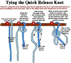 Easy way to tie a slip not or known as a quick release knot. Easy way to tie a slip not or known as a quick release knot. - Art Of Equitation Horse Camp, My Horse, Horse Love, Horse Riding, How To Ride A Horse, Quick Release Knot, Star Stable Online, Arte Equina, Clydesdale