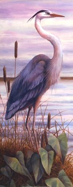 Great Blue Heron on a Pond - Trends Pin Bird Pictures, Pictures To Paint, Blue Heron, Bird Drawings, Watercolor Bird, Wildlife Art, Beach Art, Animal Paintings, Bird Art