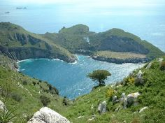 Martinique tourist information | Travel Blog