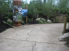 This heavily trafficked zoo walkway is a prime example of how concrete resurfacing can enhance existing concrete surfaces. Stamped Concrete Driveway, Driveway Paving, Concrete Driveways, Concrete Patio, Walkway, Outdoor Fireplace Patio, Inver Grove Heights, Concrete Resurfacing, Garage Exterior