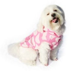 Clothes For Dogs  •  Free tutorial with pictures on how to make a dog outfit in under 60 minutes