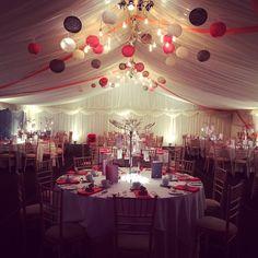 Lanterns in our marquee! Bride Bouquets, Bridesmaid Bouquet, Marquee Wedding, Wedding Table, Wedding Flower Arrangements, Wedding Flowers, Gypsophila Wedding, Tin Shed, Twinkle Star