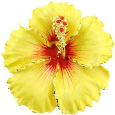 Yellow Hawaiian Hibiscus Pin Swarovski Crystal Flower Pin Brooch and Pendant(Chain Not Included) Fantasyard. Save 33 Off!. $19.99. Other color available. Gift box available for an additional fee. Please check out through gift-wrap option. Exquisitely detailed designer style