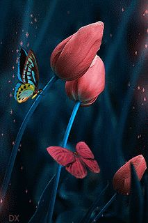 The perfect Butterfly Flower Sparkle Animated GIF for your conversation. Discover and Share the best GIFs on Tenor. Butterfly Gif, Butterfly Wallpaper, Images Gif, Gif Pictures, Beautiful Butterflies, Beautiful Flowers, Gif Bonito, Beau Gif, Animated Gifs