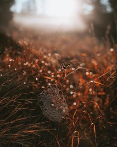 Stunning Landscape and Adventure Photography by Jakub Fišer Types Of Photography, Landscape Photography, Nature Photography, Autumn Aesthetic, Aesthetic Photo, Adventure Photography, Beautiful World, Cool Photos, Scenery