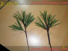 tutorial pine cone