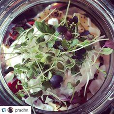 #Repost @pradhn  Wellness jar  #boho3280 #eat3280 #bohemia #wellnessjar #breakfastdoneright #warrnambool #coconut #berries #nutsandseeds #quinoa @bohemia_cafe # by destinationwarrnambool