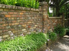 A brick wall softened with low planting to the front of it and with planting peaking over the top.