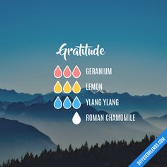 Gratitude - Essential Oil Diffuser Blend