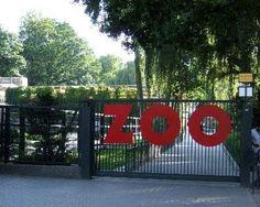 Krakow Zoo. Going next weekend!