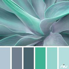 Green hues, blue hues, calm color palette, grey, pale blue, succulent color inspiration, bedroom color ideas, mint color