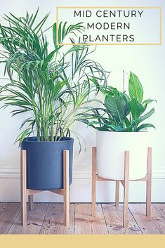These planters are so stylish. I love the modern appeal! #ad #planters #plants #gardening #greenery #midcentury #modern #minimalist