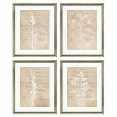 "Equally at home in an artful collage or on its own as an eye-catching focal point, this framed giclee print showcases a botanical motif against a script background for natural inspiration.  Product: Set of 4 framed giclee printsConstruction Material: Paper, glass and reclaimed wood  Color: Rustic beige frame Features: Comes ready to hangDimensions: 22"" H x 18"" W x 0.5"" D each"