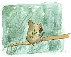 Koala by Irisz Agocs