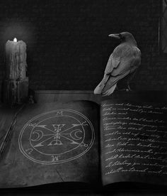 Worlds No1 spell caster black magic expert and powerful - love me alone ,stop…