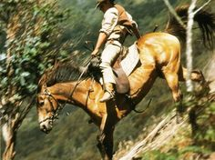The Man from Snowy River (1982) One of my all-time favorites. Yea!