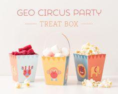 FREE Printable Geo Circus Party Treat Boxes   Tinyme Blog