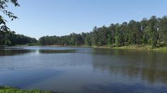Zina Marshall-Mose-Flat Rock Park by Visit Columbus GA, via Flickr