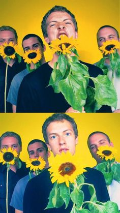 This is probably what started Chris's sunflower obsession.