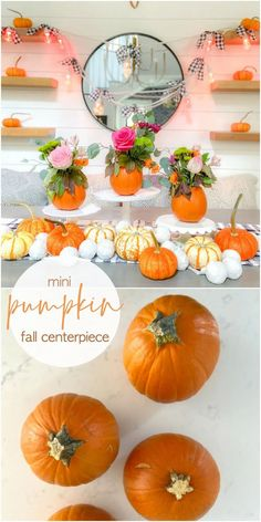 Mini Pumpkin Flower Arrangement Centerpieces. Care small pumpkins and display cut flowers for an festive fall centerpiece.