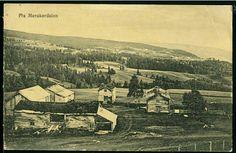 Parti fra Meråker i Nord-Trøndelag fylke Utg Narvesen ca 1900