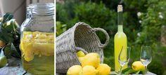 Limoncello, licor dos frutos e do sol da Itália