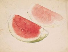 watermelon by seiho takeuchi