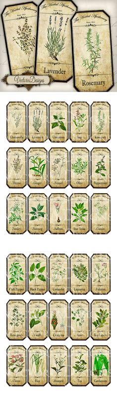 Herbal Apothecary Bottle Labels