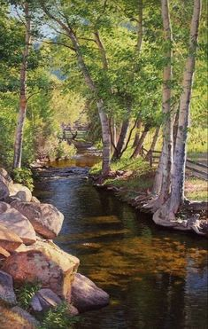 Beautiful birch tree-lined stream winding through the landscape. It looks like oil or acrylic. Gorgeous details (I'm not sure who the artist is). Landscape Photography Tips, Landscape Photos, Landscape Art, Landscape Paintings, Nature Photography, Balloons Photography, Photography Studios, Urban Landscape, Photography Business