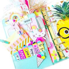 Planner pockets, mint Kikki.K, kikkik planner pockets, pineapple