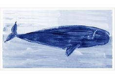 Print of a blue wright whale.