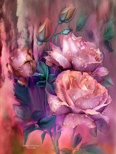 Raindrops on Peach Roses - Carol Cavalaris
