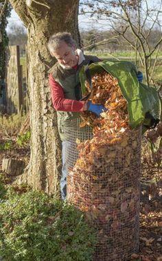 Die Bäume und Sträucher werfen jetzt immer mehr Blätter ab – in einigen Gärten so viel, dass die Gartenbesitzer das Laub aus Platzmangel einfach mit dem Hausmüll entsorgen. Aber dafür ist es eigentlich viel zu schade. So können Sie es sinnvoll weiterverwenden.