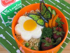 An easier butterfly garden using left over fried rice, broccoli, fresh fruits and is that a molded fried egg?