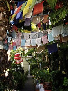 but it& taking on a whole new shape, literally. Inspired by Buddhist Tibetan prayer flags, on-trend bunting has gone square + meaningful! Tibet, Burlap Garden Flags, Prayer Garden, Prayer Flags, Bunting Banner, Buntings, Collaborative Art, New Shape, Flag Decor