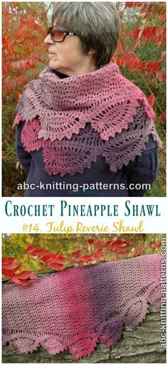 Asymmetric Shawl In Plymouth Yarn Hot Cakes F824 Downloadable