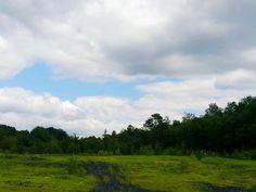 Grassy pennsylvania